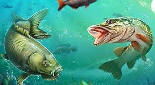 Feed And Grow Fish Kostenlos Spielen